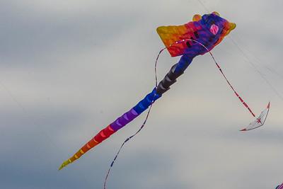 Bonner Springs Balloon Glow (1)-73