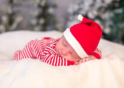 Dyson-HolidayMini2015-031