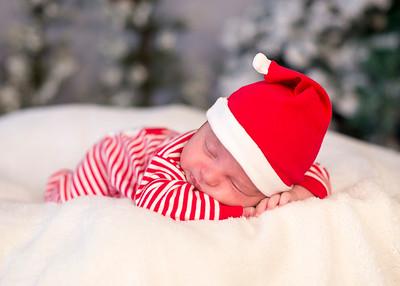 Dyson-HolidayMini2015-030