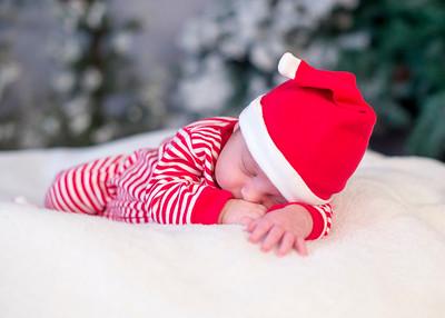 Dyson-HolidayMini2015-028