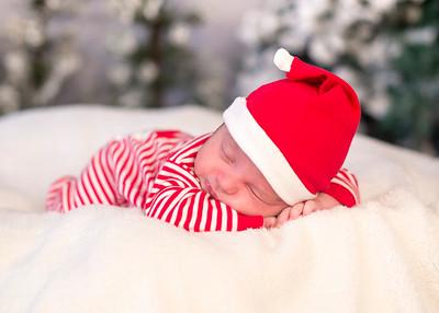 Dyson-HolidayMini2015-029