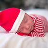 Dyson-HolidayMini2015-038