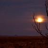 Full Moon setting on Christmas Morning