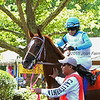 July 18, 2015: Beauty Girls Dream, Mario Rodriguez up, walks in the paddock before race 5, a maiden claiming race for fillies and mares 3 and upward, one and 1/16 miles on the turf at Delaware Park in Stanton DE.  Joan Fairman Kanes