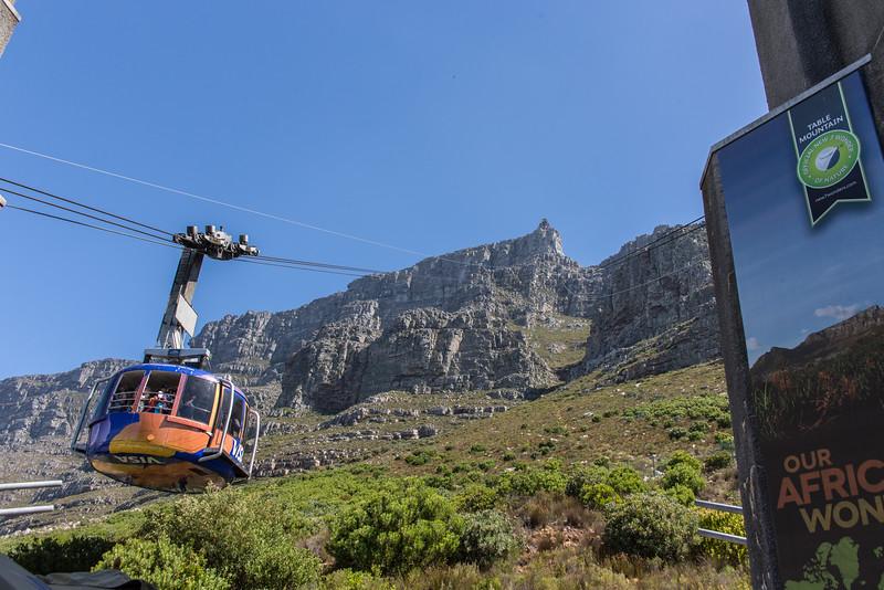 Cape Town-4491