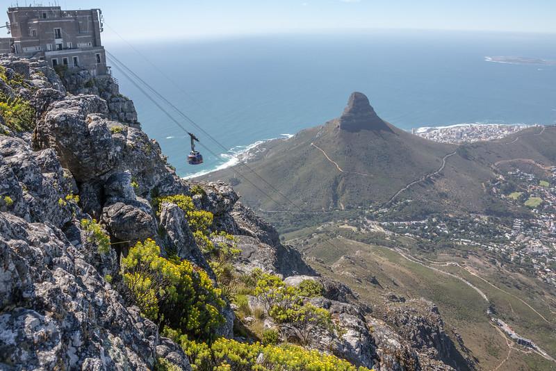Cape Town-4530