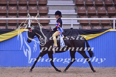 Class 18 Junior Rider 12 years & under
