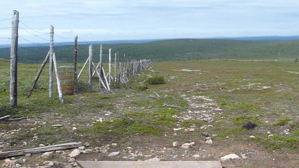A deer fence near the start