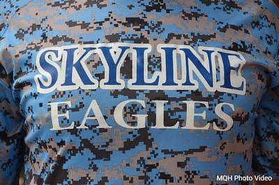 Skyline Baseball 2015