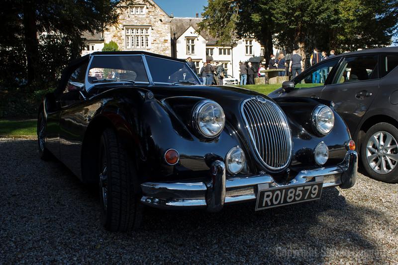 Jaguar Aristocat
