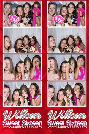 Willow's Sweet 16