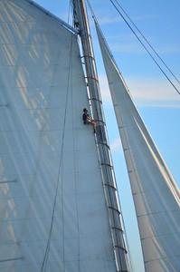 Mast Perch
