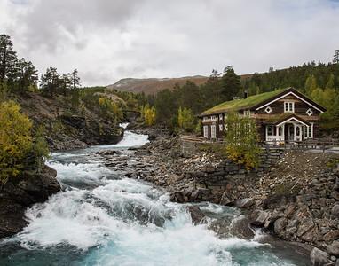 Norweigen Fall