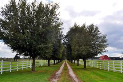 Barn's Long Road