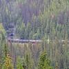 the train entering far entrance