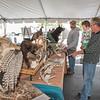 150926 Wildlife Festival 3