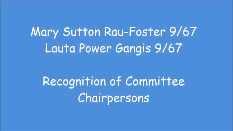 2 Recognition of Committee Chairpersons