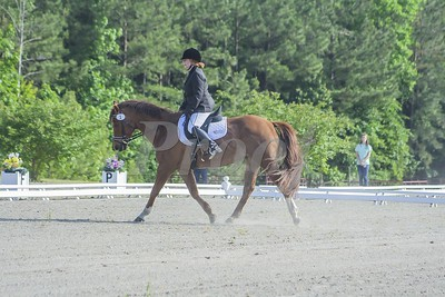 Bridle 1 Heather Ratcliff Erickson and Aly's Abram