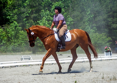 Bridle 23 Beth Bass And Rembrandt