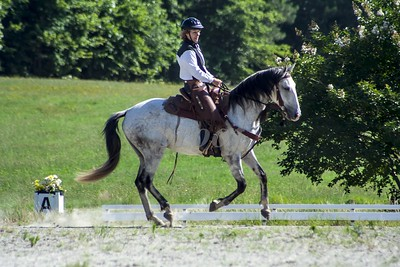 6-13-2015 All Riders Sample Shots. Riders who are interested in seeing more samples of photos or videos should email markcalvo@laughinghorsephotos.com. Include your bridle number and we will get samples online for you.