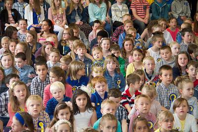 15 ILF HCR Schools 00001