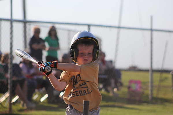 2015 LITTLE LEAGUE BASEBALL & SOFTBALL