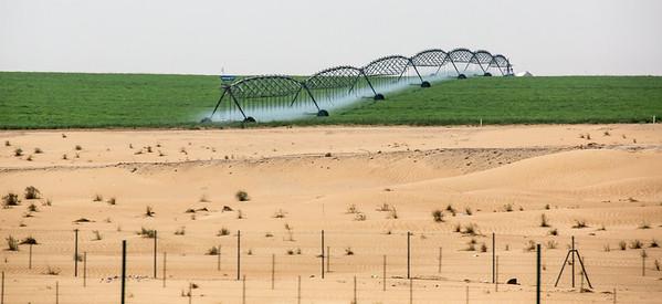 Abu Dhabi-1108