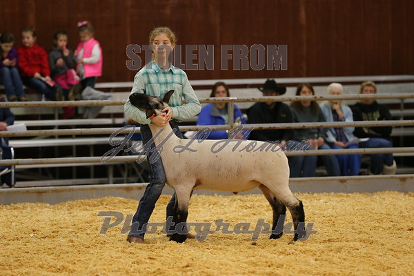 2015  MS State Extension Services Livestock Shows