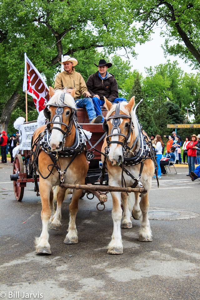 The Parade