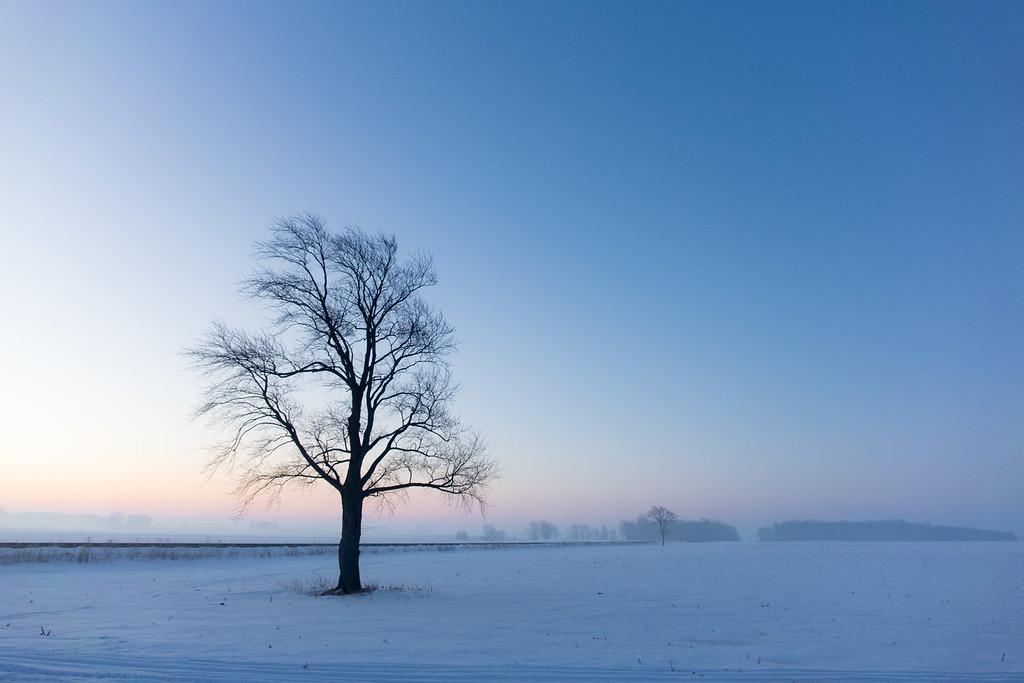 3/9 - Morning Fog