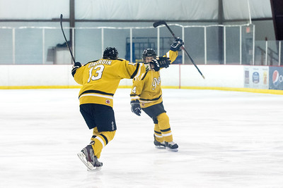 Brandt Rogers celebrates his second period goal against Indiana in the ICHC Tournament