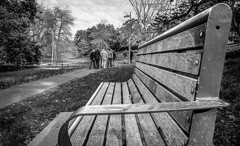 The Bench - black & white