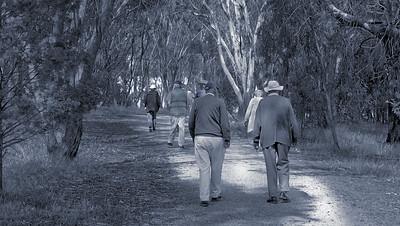 Walking Companions