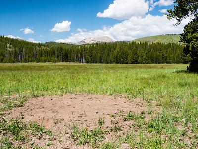 Yellowstone 6/22/2015
