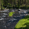 Moose Falls, Crawfish Creek, Yellowstone NP, WY
