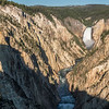 Canyon from Artist Point, Yellowstone NP, WY