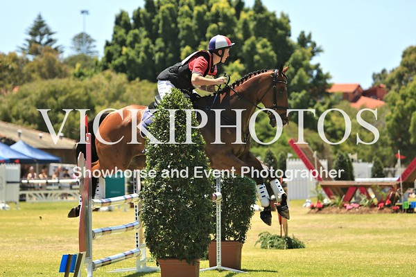 Eventing in the Park