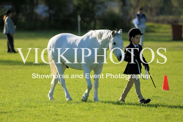 Gosnells Winter Showcase