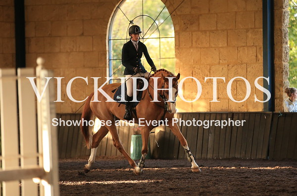 Horseland Young Horse S/Jumping Championships
