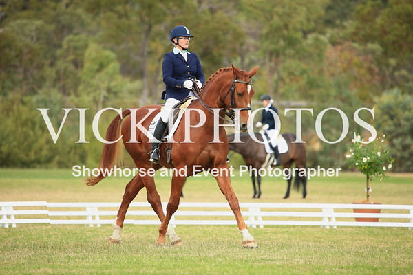 Jill Stanton Memorial Dressage Day