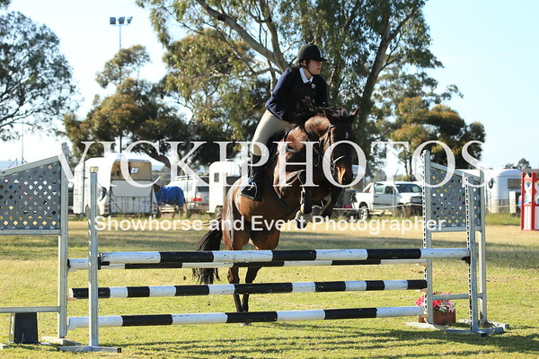 Pinjarra Showjumping Spectacular - Ring 1.