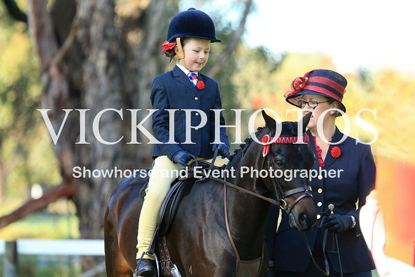 Pinjarra Winter Hack/Hunter Gala Day