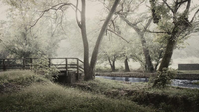 Misty Morning I