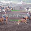 Elk2015_5664