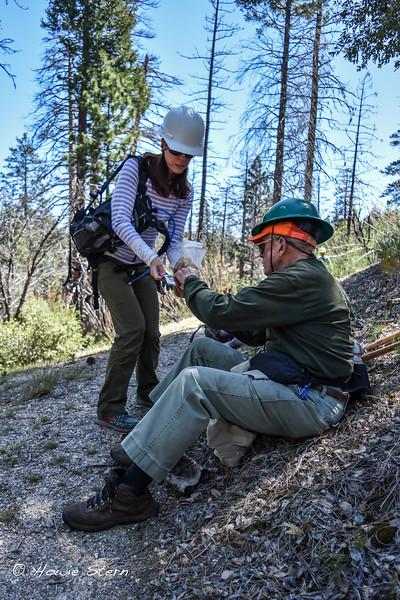 AC trail work 4_11-3
