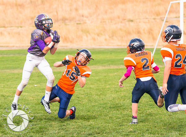 Spartan Purple vs Hawk Orange-45
