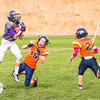 Spartan Purple vs Hawk Orange-45