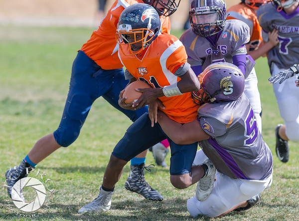 Spartan Purple vs Hawk Orange-56