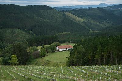 10 Berroia Winery