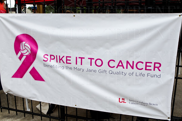 2015 Spike it to Cancer